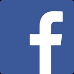 bacebook-icone